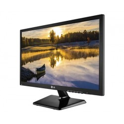 "LG 19M38A 19"" LED display"